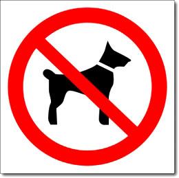 Знак «Вход с собаками запрещен»